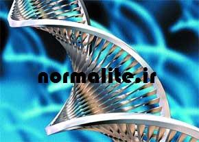 http://up.normalite.ir/Pictures/normalite/normalite_zhengiahi.jpg